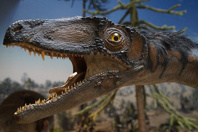 exponát dynosaura