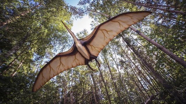 letící pterodaktyl